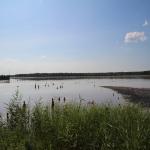 Lacu Sărat